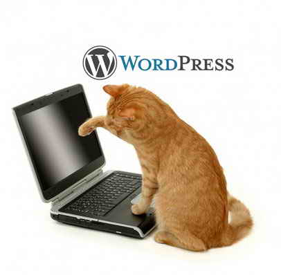 Wordpress шаг к цели