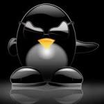 8 правил успешного продвижения сайта под Пингвином
