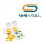 Добавить код РСЯ Яндекс на сайт через Профит Партнер