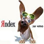 Почему мой сайт попал под АГС? Фильтры Яндекса – подробности