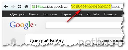 Идентификационный номер в Google Plus