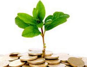 Стартовый капитал для создания бизнеса